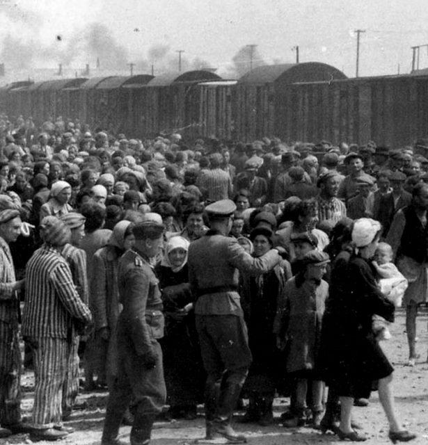 История лагерей